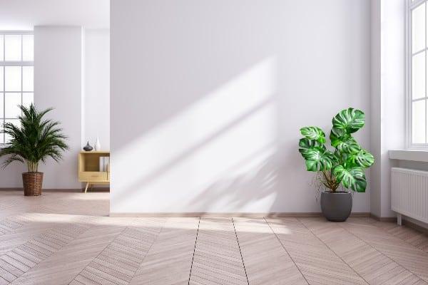casa con luz natural